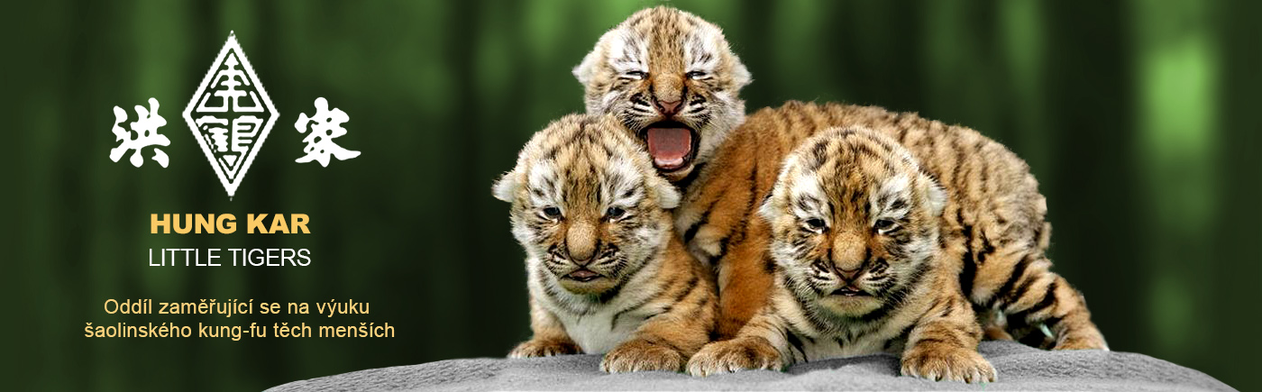 Hung Kar Little Tigers